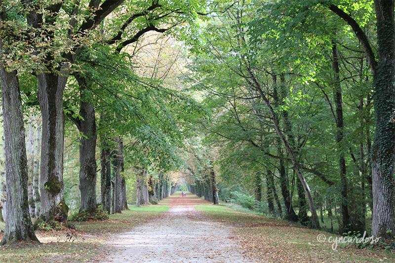 Viagem: Conhecendo o Castelo de Chenonceau no Vale do Loire